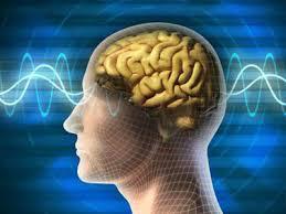 ψυχολόγος - εγκέφαλος